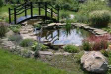 Как оформить искусственный водоем в саду с помощью растений