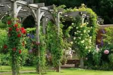 Два подхода к сооружению сада и озеленению