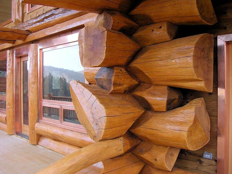 Как защитить материалы из дерева от повреждений