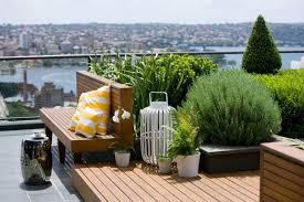 Сад на крыше и его оформление