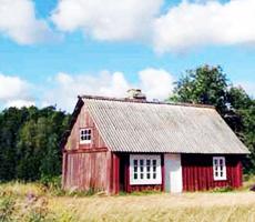 Конструкционные особенности каркасного дома