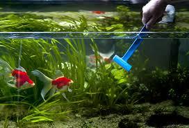 Советы по чистке аквариума