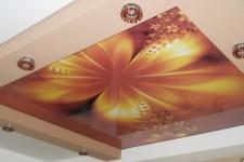 Натяжные потолки с фотопечатью: пять советов по выбору