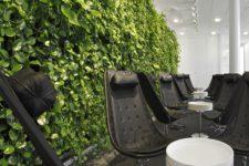 Озеленение помещений – красота и польза