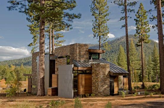 Использование хосты в ландшафтном дизайне