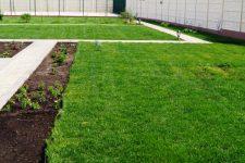 Виды высококачественных газонов