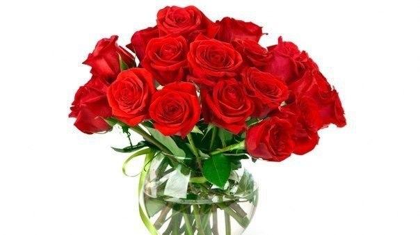 Чтобы цветы дольше радовали наш взгляд нужно несколько хитростей