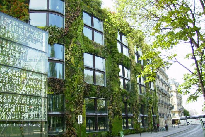 Основные преимущества вертикальных садов на фасадах домов: скоро сделать также захочется каждому
