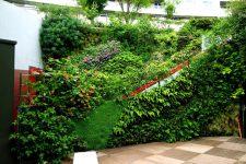 Вертикальное озеленение и архитектурные фантазии на вашем участке