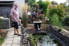Как очистить домашний пруд