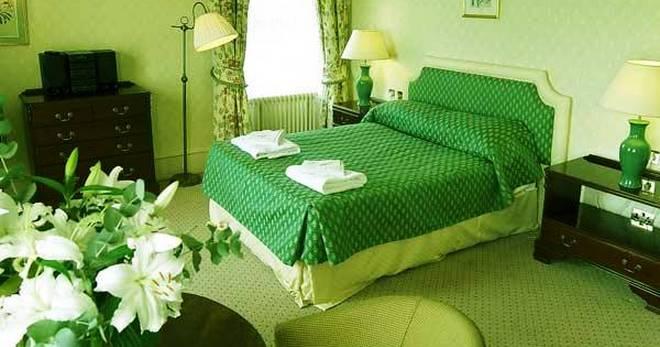 Зеленый ковролин — как удачно сочетать в интерьере?