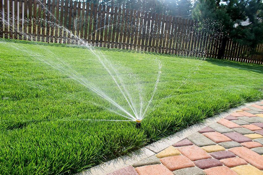 Ухоженный газон – мечта любого домовладельца