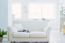 Как сочетать цвета в квартире?