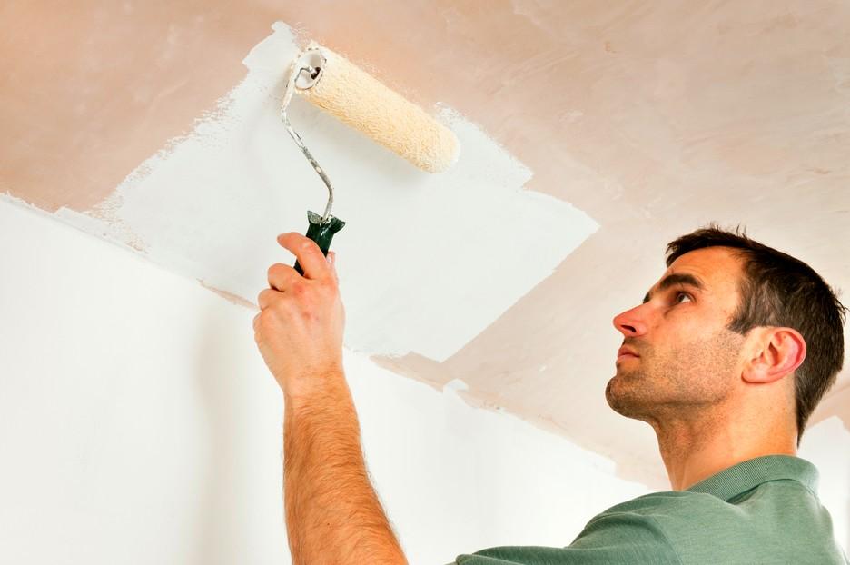 Что нужно знать перед покраской стен?