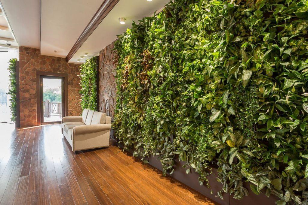 Вертикальное озеленение в квартире: способы, конструкции, нюансы